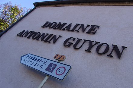 guyon savigny les beaune