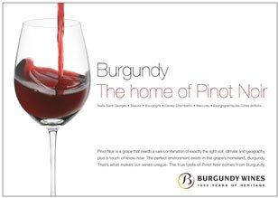 burgundy &#8211; the home of pinot noir