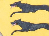 morey wolves