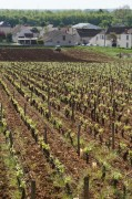a new owner of the nsg clos des grandes vignes&#8230;
