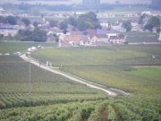 Day 6 - View down on Vosne with La Grande Rue right & Romanee Conti left