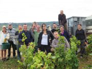 The Hand Picked Early a.m Chambolle Village raid team - a scary bunch !