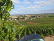 Vosne from Petits Monts