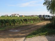 Gevrey La Justice - we started cutting on the other side near the block of flats in the distance