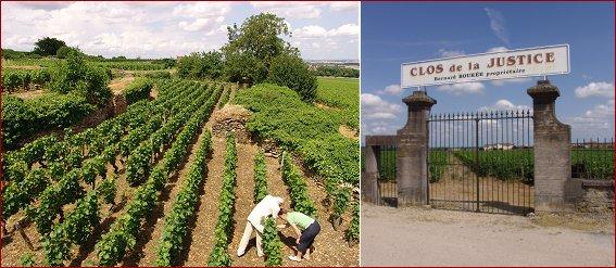 (clos) Champeaux and Clos de la Justice