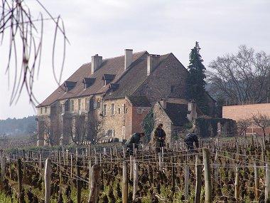 clos de la perriere vineyard work
