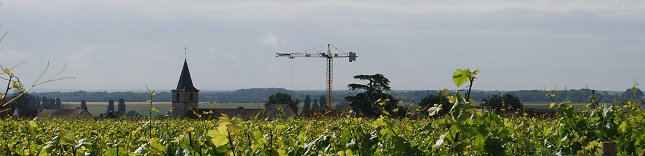 the belair construction crane pic credit david lester