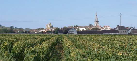31st august – this time savigny & beaune