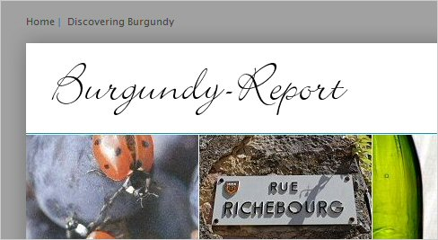 discovering burgundy