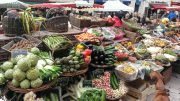Beaune market
