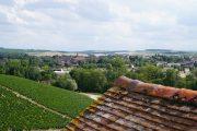 Above Mouton towards Chablis town...