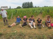 Arlaud Vendange Final Day Casse-Croute break after Aligote - L to R Jackie, Cedric, Laetitia, Antoine, Aurore & Sandrine